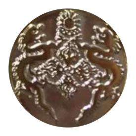 Two Tone Gold & Silver Lapel Pin Metal